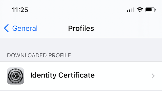 Identity Profiles in iPhone Settings
